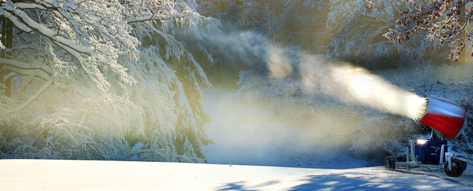 Armatka śnieżna Welderstal WS Snow 195